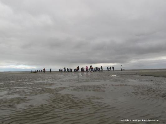 UNESCO Weltnaturerbe - Niedersächsisches Wattenmeer