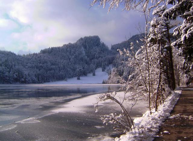 Der Alatsee im Winter