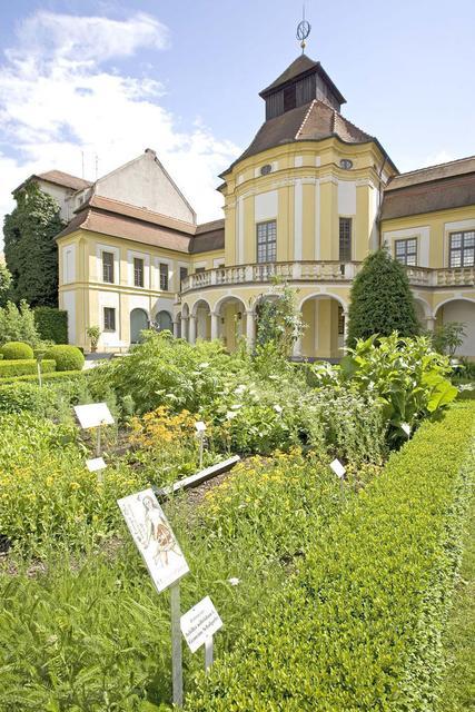 Der Kräutergarten der Alten Anatomie in Ingolstadt