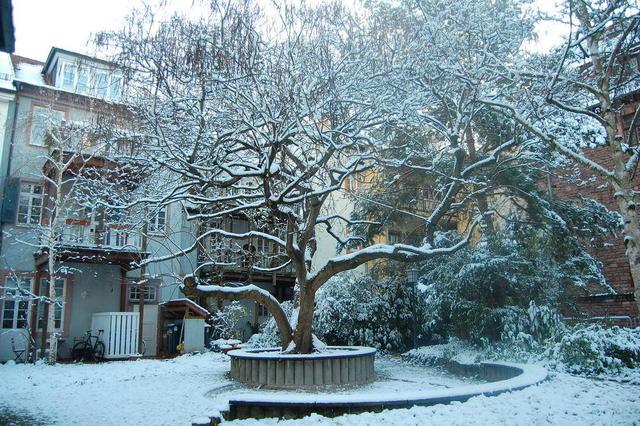 Winter in der Heidelberger Altstadt