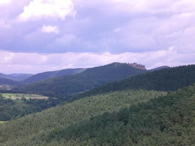 Ein Blick in die Umgebung von Burg Berwartstein
