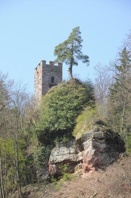 Burg Erfenstein von unten