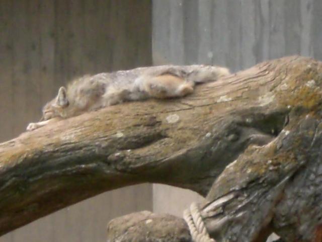Total entspannt!