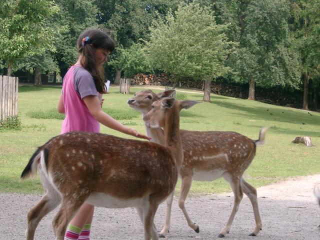 Wildpark in Ortenburg