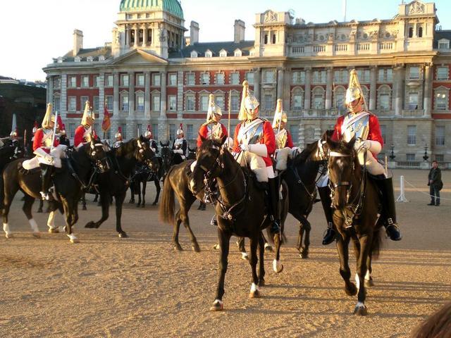 wunderschöne Pferde vor Buckingham Palace