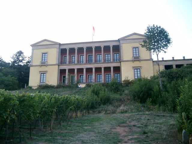 die Gartenfront der Villa Ludwigshöhe