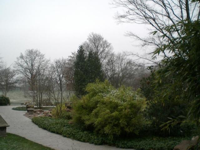 Herbstlicher Weg im Luisenpark