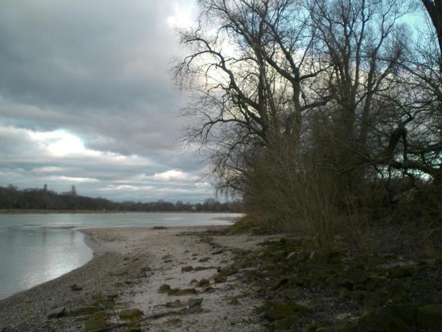 Rhein-Strand