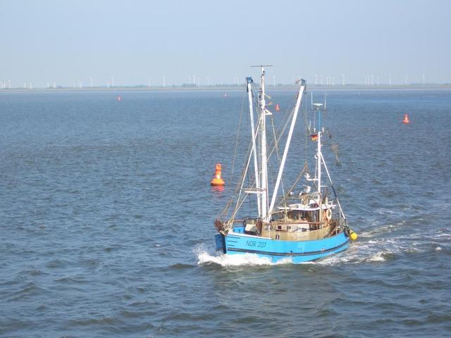 Fischkutter vor Norden/Norddeich