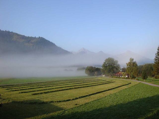Morgennebel bei Grän