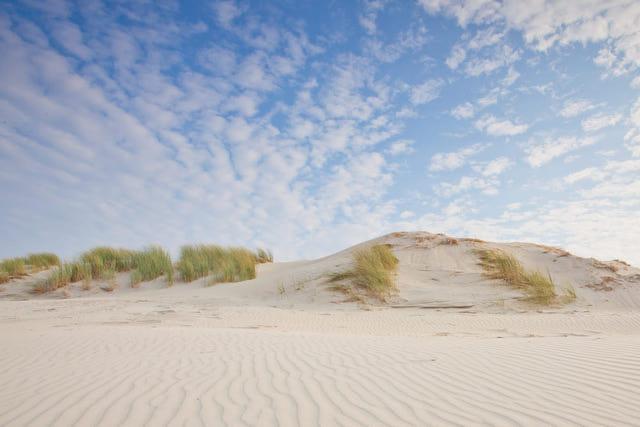 Dünenlandschaft an der Küste