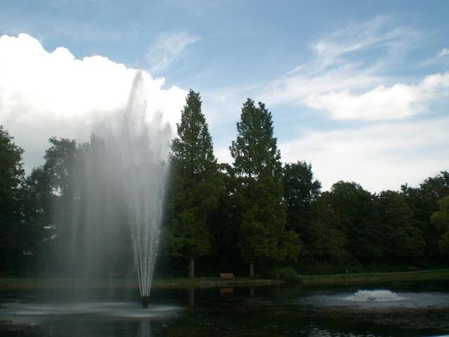 Szenerie im Friedrich-Ebert-Park