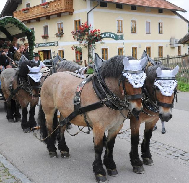 Tradition in Ascholding