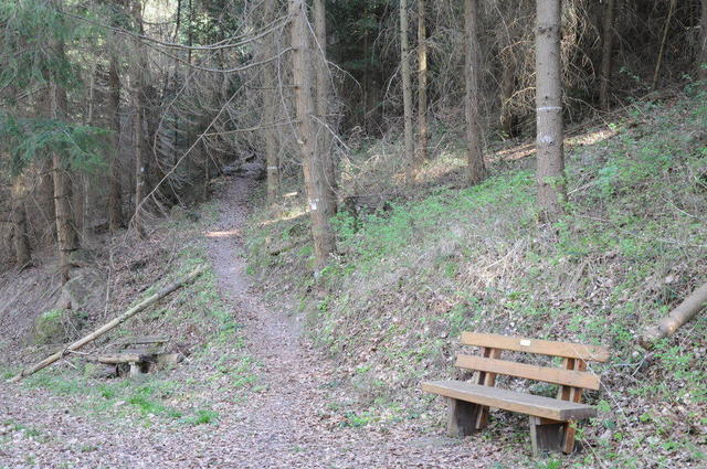Fußweg zum Stutengarten