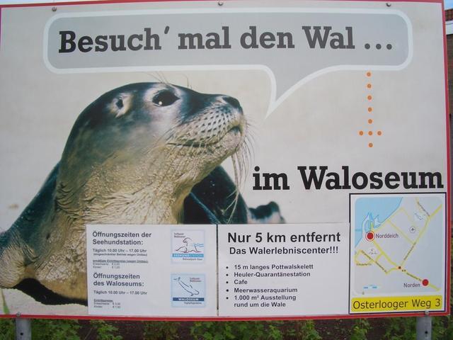 Hinweisschild Waloseum