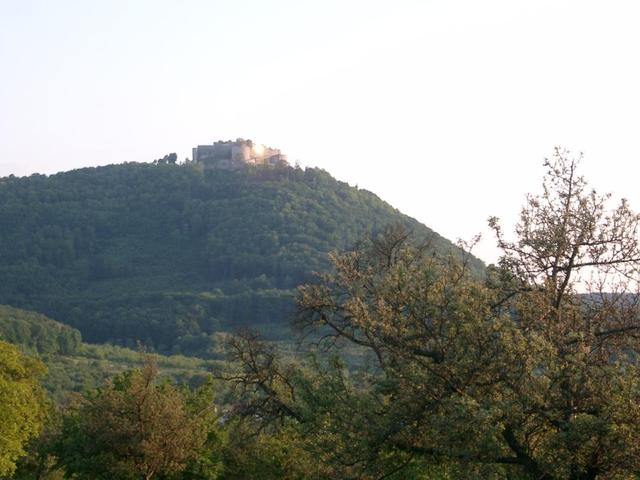 Ziel in Sicht: Burg Hohen Neuffen