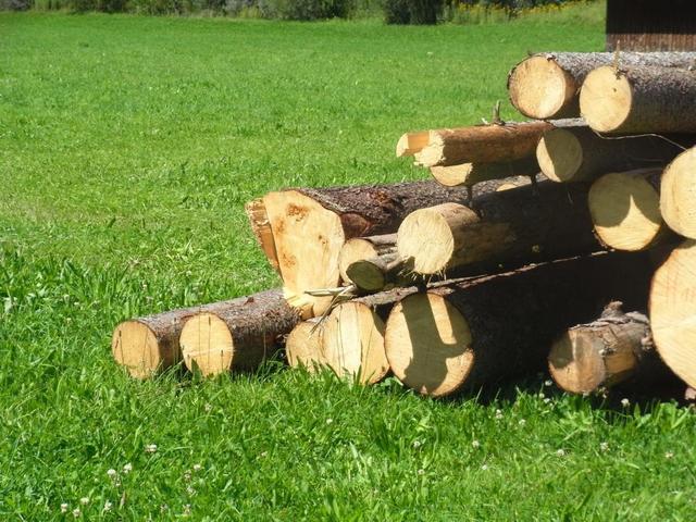 Holz am Wanderweg bei Isny