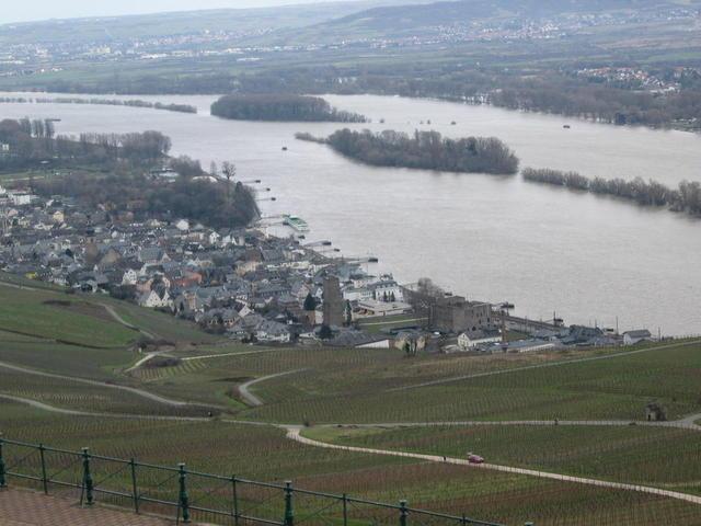 Stadt Rüdesheim