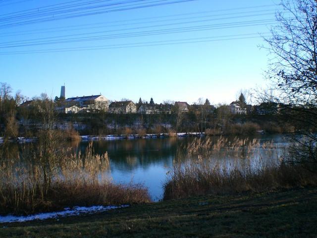 der Neckar bei Ilvesheim