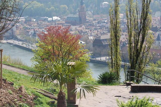 Blick vom Philosophenweg über die Heidelberger Altstadt