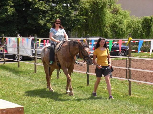 Ponyreiten für Große und Kleine