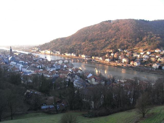Heidelbergs Altstadt eingebettet im Neckartal