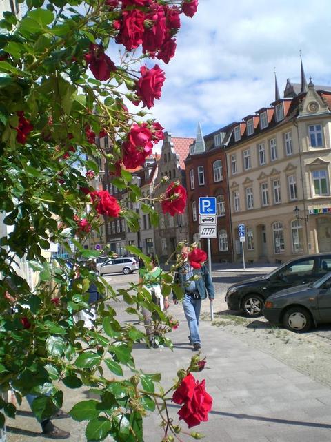 Straße in Wismar
