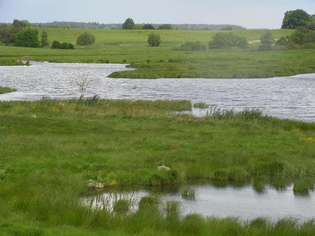 Typische Landschaft der Mecklenburger Seenplatte