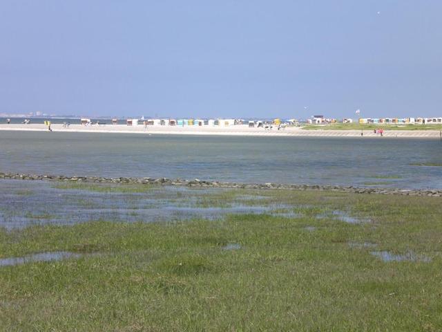 Strand am Niedersächsischen Wattenmeer