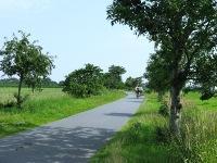 Eine Landstraße vor dem Ferienhaus in Hartward