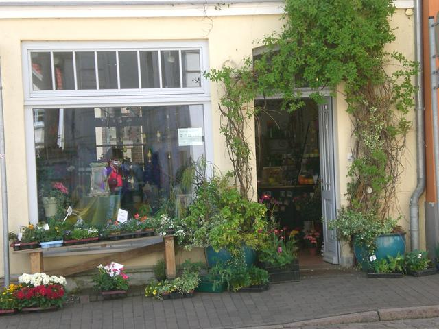 Blumenladen in Teterow