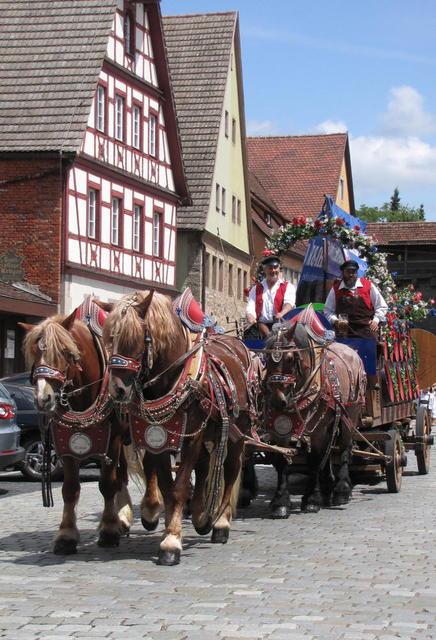 Das schöne Gespann der Landwehrbrauerei Reichelshofen in der Galgengasse beim Volksfestumzug durch die Stadt.