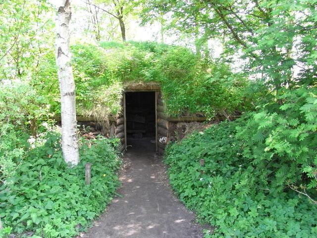 Zugewachsene Plaggenhütte