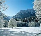 Der winterliche Park Schloss Linderhof